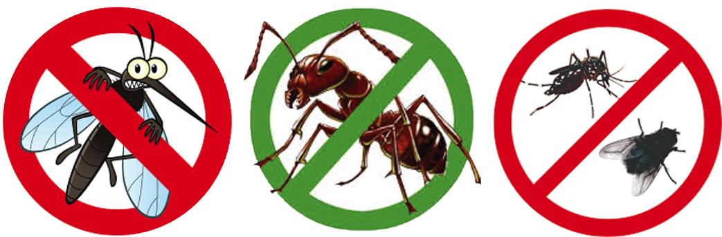 Lắp đặt cửa lưới chống muỗi quận 7 ngăn côn trùng và muỗi